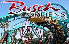 Busch Gardens, Tampa